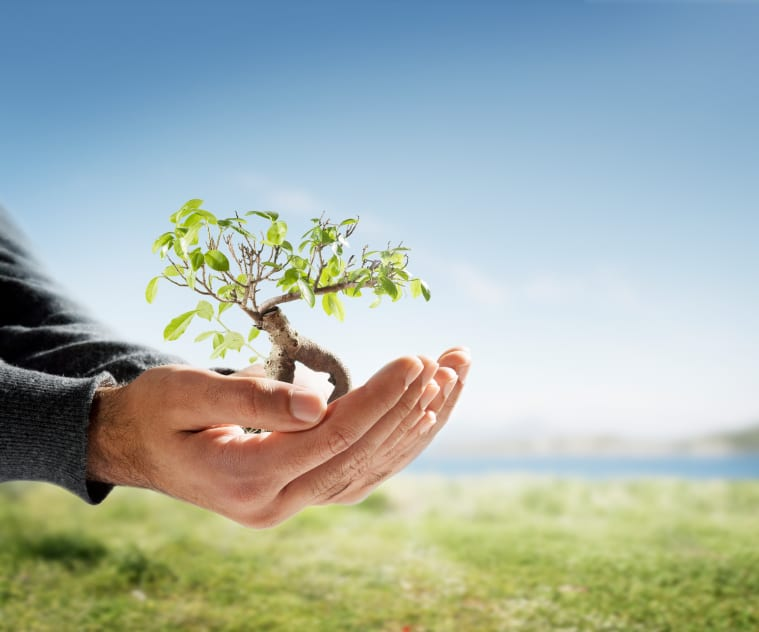 Personal Growth Income Is Essential For Your Success